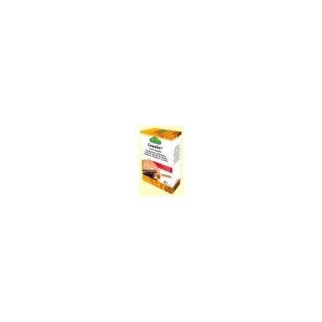 Cinnulin -canela cápsulas- 40 cápsulas de 990gr Dr.Dunner