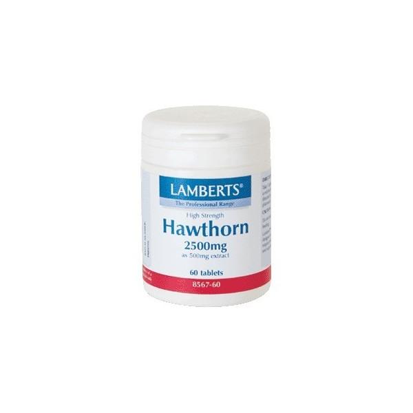 Espino blanco 2500 mg 60 tabletas Lamberts