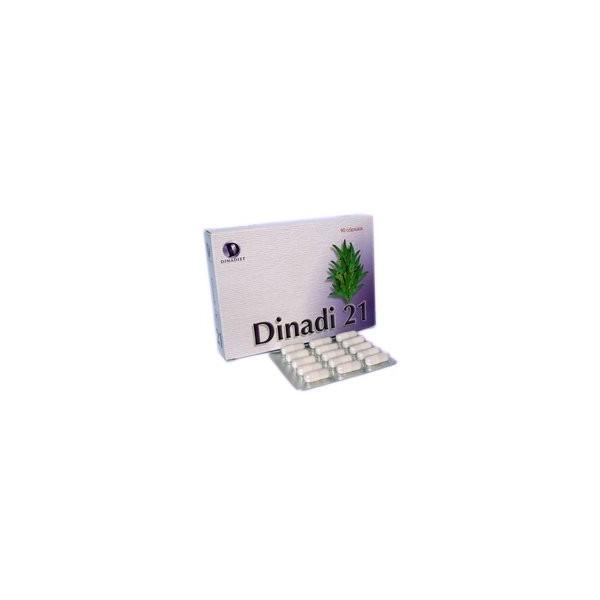 Dinadí 21 90 cápsulas 500 mg Dinadiet