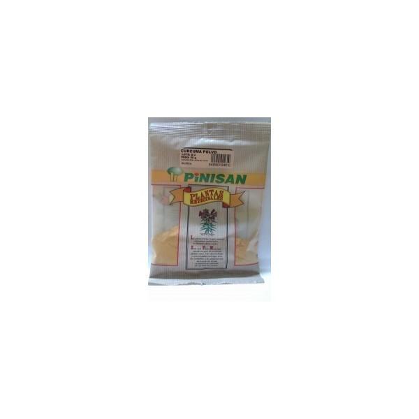 Curcuma polvo como planta en bolsa 50 g Pinisan