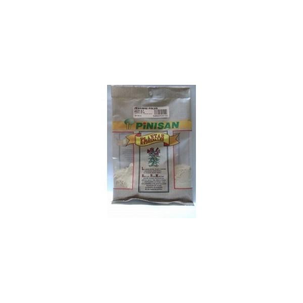 Jengibre polvo como planta en bolsa  50g Pinisan