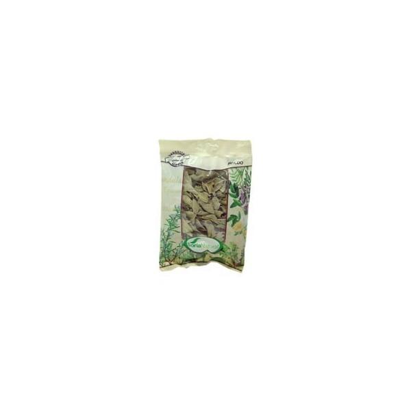 Boldo como planta medicinal en bolsa 40g Soria Natural