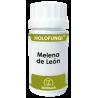 Holofungi Melena de Leon 50 cap Equisalud
