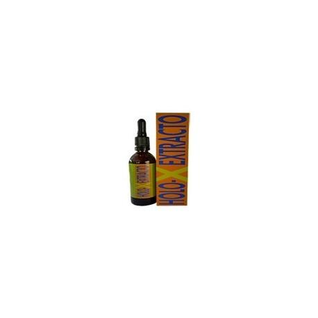 Holo-X extracto 50 ml Equisalud
